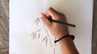 Quick & Dirty Tip: How to Sketch Bamboo in Under 2mins