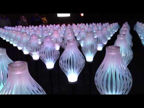 20111129 Taipei Expo Park - Florabot