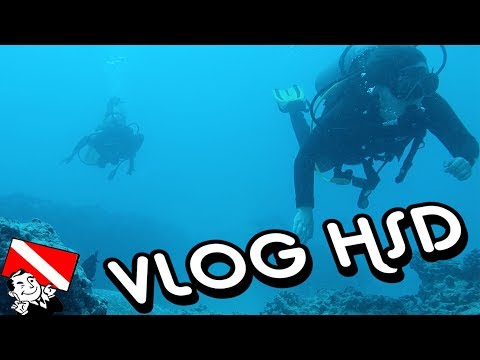 Try Scuba Diving Hawaii - Honolulu Scuba Diving