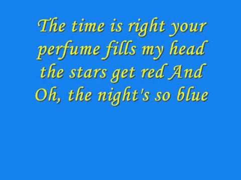 Something Stupid    ( Robby Williams and Nicole Kidman )  Lyrics