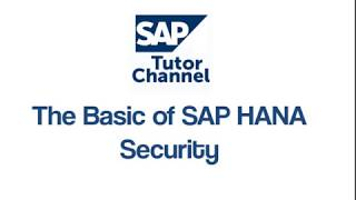 The Basic Of SAP HANA Security
