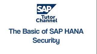 The Basic Of SAP HANA Security