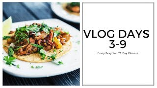 "VLOG DAYS 3-9 ""SUNSHINE BREAK!"" 