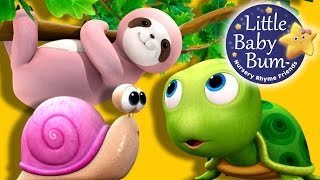 Things That Go Slow Song | Nursery Rhymes | Original Song by LittleBabyBum