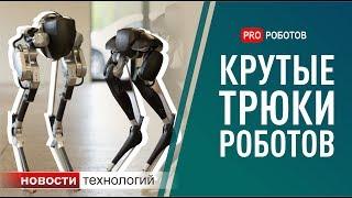 Самые крутые роботы: чему смогли научить роботов? (Новости технологий)