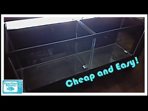How To Paint Fish Tank Backgrounds: Simple And Cheap!