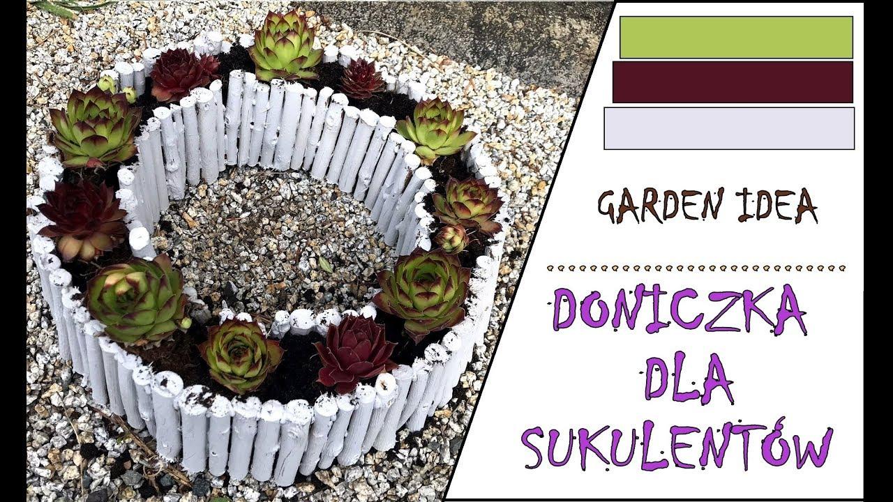Doniczka Dla Sukulentów Sukulenty Rojniki Pierścień Pot For Succulents