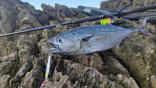 Доброе тунцовое утро Рыбалка на берегу Адриатического моря