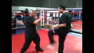 Kogan Self-Defense Video - SPETSNAZ USA 11