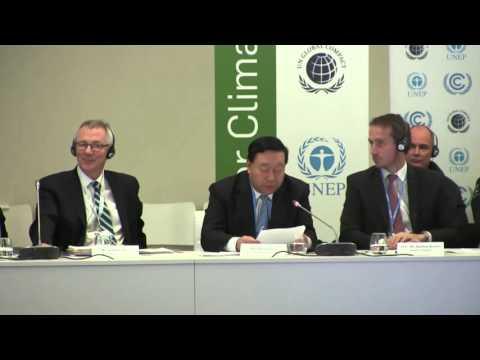 C4C Business Forum COP21 –  Mr. Liu Zhenya, Chairman of State Grid Corporation of China