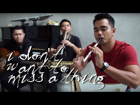 I Dont Want to Miss A Thing  Alif Satar