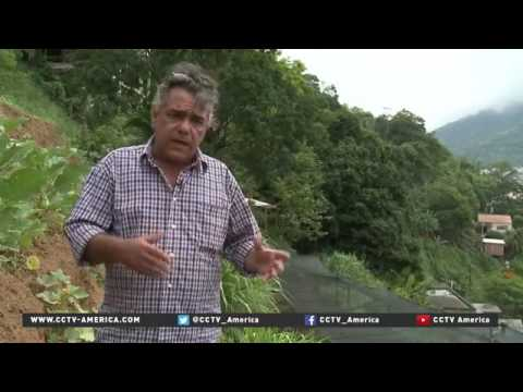 28192 rizne agriculture CCTV America Organic food garden created in Rio's neglected neighborhood