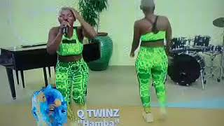 Official. qwabetwins -performs Hamba on afternoon express