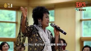 가수 하성희-돈바람아불어라[음악을그리는사람들] 가사포함