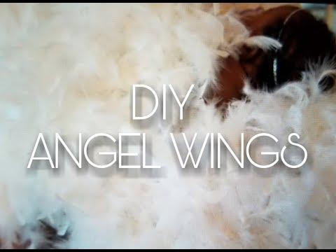 Easy DIY Angel Wings: Photoshoot, Halloween, Dress Up