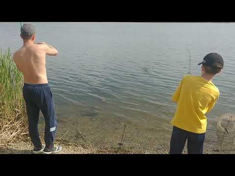 Рыбалка,карп на 2 кг