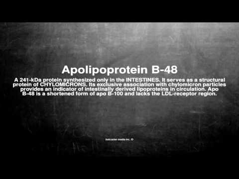 Medical vocabulary: What does Apolipoprotein B-48 mean