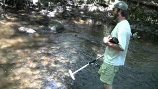 Sea lamprey, dam removal, and habitat restoration