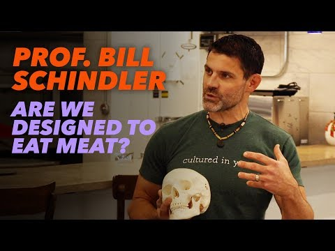 Prof. Bill Schindler Are We Designed to Eat Meat?