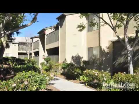whispering oaks apartments in san marcos ca forrent com youtube
