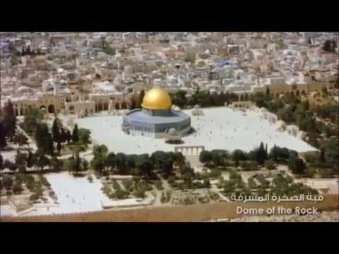 Palestine Wants Freedom