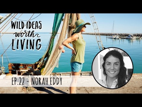 Saving the Ocean with Sustainable Seafood Practices with Norah Eddy