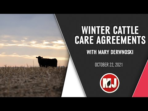 Winter Cattle Care Agreements | Mary Drewnoski | October 22, 2021