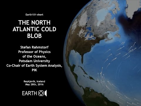 The North Atlantic Cold Blob