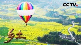 《乡土》 20190502 腾冲的花样春天| CCTV农业