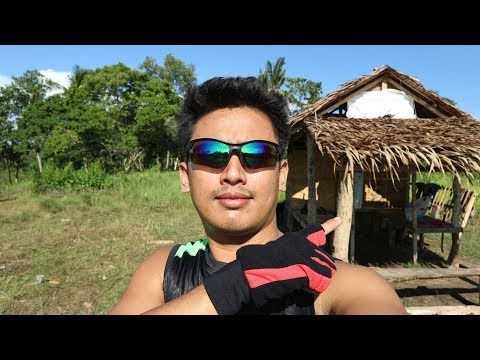 My 1.5 Hectares Land Farm in Bohol