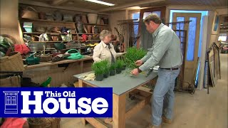 Gambar cover How to Choose Grass Seed | This Old House