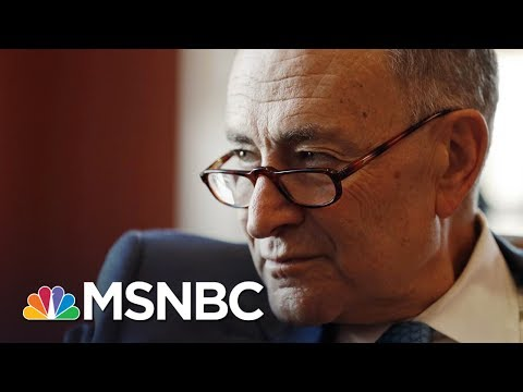 Chuck Schumer Perfectly Lampoons President Donald Trump Cabinet Meeting | All In | MSNBC