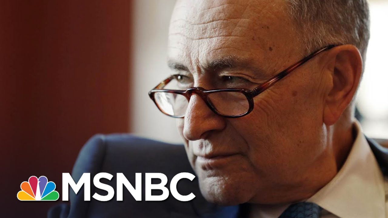 Chuck Schumer Perfectly Lampoons President Donald Trump Cabinet ...