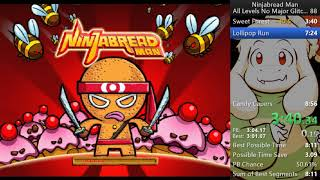 Ninjabread Man PC All Levels NMG in 8:19