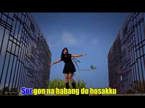 Holan Mangingot Ho - Hana Qu Panjaitan