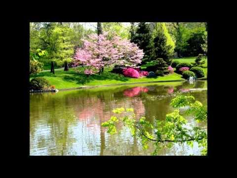 Vội vàng - Xuân Diệu (Đọc Thơ)