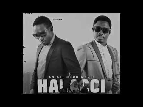 Download Ali Nuhu Halacci by Umar m Sharif