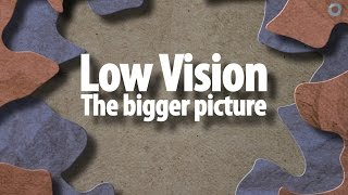 Low vision: the bigger picture