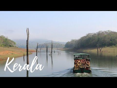 EXPLORING WILD TIGER RESERVE - Kerala Blog Express