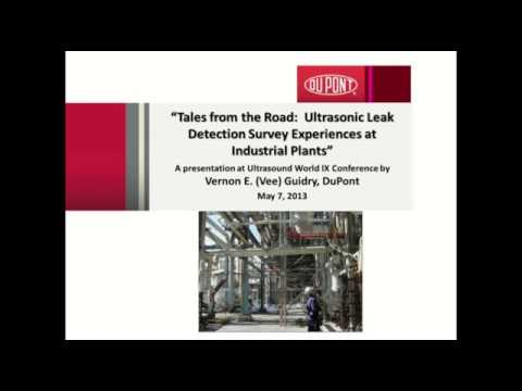 A Successful Leak Detection Program at DuPont