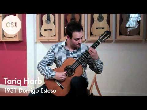 Rodrigo 'Concierto de Aranjuez - Allegro con spirito' played by Tariq Harb