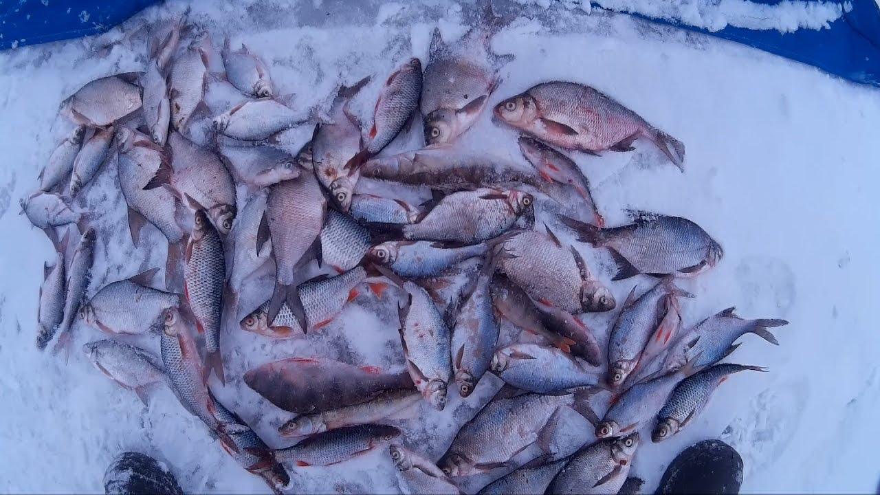 Зимняя ловля на рузском водохранилище
