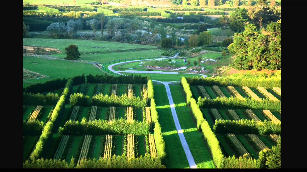 the arial view of landscape agriculture