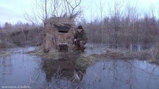 Весенняя охота с подсадной уткой видео