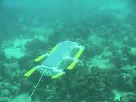 AQUA - a swimming/walking robot