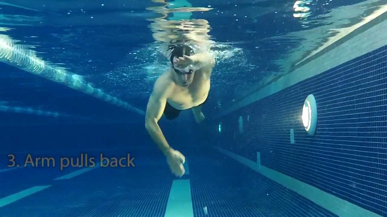 front crawl arms underwater youtube
