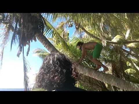 Henderson Island 2