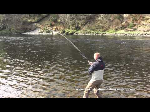 Newtyle River Tay, 26 Pound Salmon Caught On The Fly.