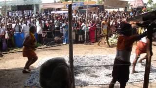 ganesh sathurthi - Vinayagar Sathurthi - Uppur - Veyilugantha Vinayagar 1