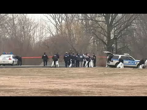 Arms, legs found in park after discovery of dismembered body